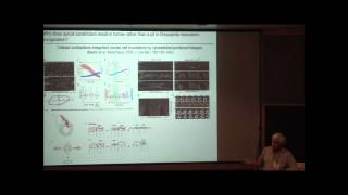 GEM4 2012 @ MIT - Developmental Biology II