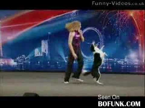 Smart Dogs - This border collie can do anything! Even Simon Cowell has his mouth open the whole performance! Totally unique! Don't miss this one!