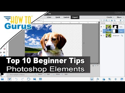 Photoshop Elements Beginner: Top Ten Things to Know Photoshop Elements for Beginners