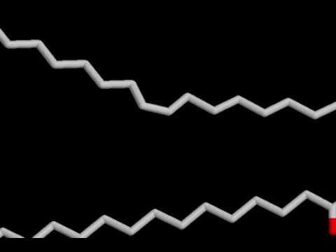 11 2 Lipids and Lipid Bilayer