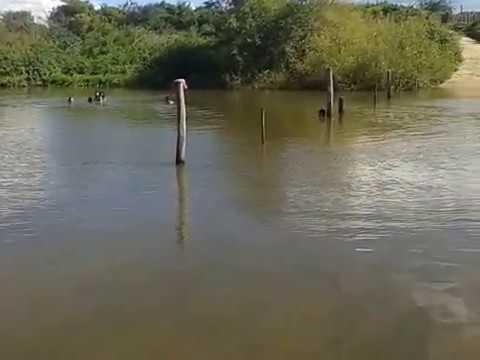 BARRA DO RIO - Crateús-CE - Passagem molhada com muita água