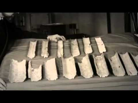 The Discovery Of The Dead Sea Scrolls