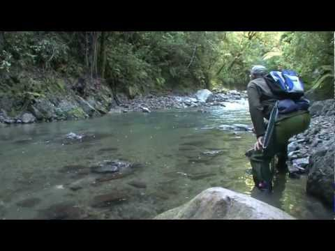 nymph - takethebait.co.nz is a New Zealand based trout fishing TV series. Watch renowned fishing guide Graeme Ryder nymph fishing on remote streams North Island New ...