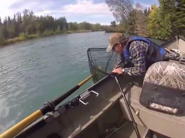 Alaska Rainbow Trout Fishing