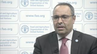 La Situation des marchés des produits agricoles 2015-2016 (SOCO)