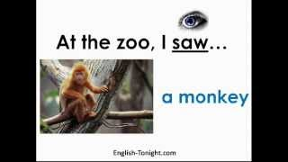 English Zoo&Animal Vocabulary