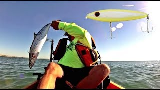 "Video ""BARELY OFFSHORE"" Spanish Mackerel fishing in Corpus Christi, Texas MP3, 3GP, MP4, WEBM, AVI, FLV Oktober 2018"