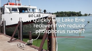 HABs FAQs: How quickly will Lake Erie recover if we reduce phosphorus runoff?