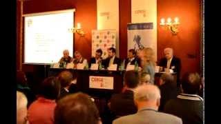 Česká zahraniční a evropská politika před volbami (3/4)