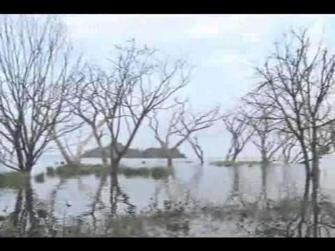 Lago Los Tacariguas - El Lago de Valencia y el Parque Nacional Henry Pittier, son los iconos geográficos de Maracay. El incumplimiento de las obras previstas para su conservación,...