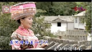 QEEJ VERSION - Mim Haam - Kheev Lam Koj Yog Ib Res Paj (假如你是一朵花)