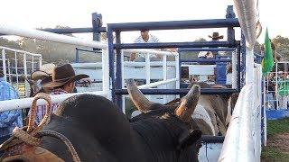 Mais uma tarde de treinos no centro de treinamento de montarias em touros da Cia de Rodeio Turquinho,  na cidade de Pratânia-SP, na propriedade do Sr Elzio Rodrigues Duarte, desta vez com a participação da boiada da cia de Rodeio Jair Gregório de São Manuel-SP, confiram.