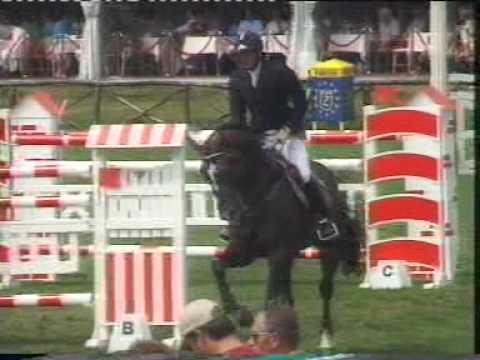 Orlando, International Show Jumper and Breeding Stallion