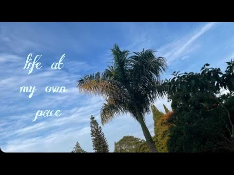 DAY 4&5 TILL 21: A QUIET MORNING :LIFE AT MY OWN PACE:LIFE AT MY OWN PACE