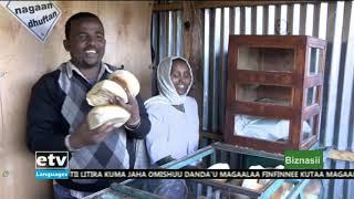 Oduu Biznasii Afaan Oromoo Dec, 29/2019  |etv