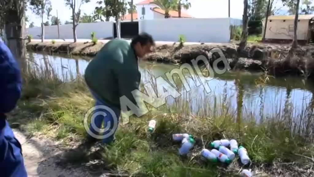 Επικίνδυνα φυτοφάρμακα στον Ερασινό ποταμό  στη Νέα Κίο Αργολίδος