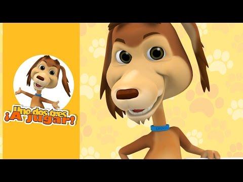 perro chocolo - En este capítulo los amigos del perro Chocolo le organizan una fiesta sorpresa, pero que por un desagradable mal entendido, las cosas estuvieron a punto de t...