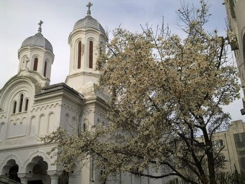Duminica a V a din Post a Cuv. Maria Egipteanca - Predica Parintelui Marius Mosteanu - 06.04.2014 (видео)