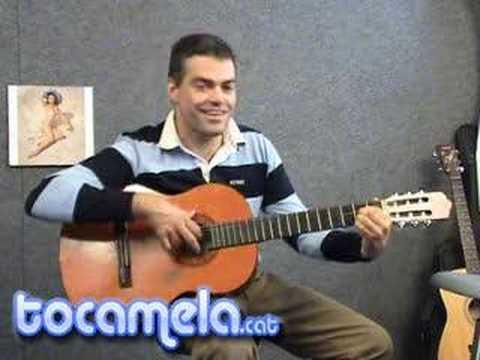 El Guitarrista Farsante