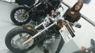 10. Harley Davidson sportster 1200 2013 custom anniversary xl1200c