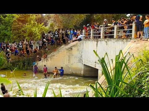 Video Amazing Khmer Real Life Fishing At Siem Reap Cambodia -Khmer Fishing At Siem Reap Cambodia download in MP3, 3GP, MP4, WEBM, AVI, FLV January 2017