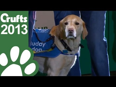 Guide Dogs Display – Crufts 2013