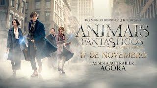 Video Animais Fantásticos e Onde Habitam - Trailer Final (leg) [HD] MP3, 3GP, MP4, WEBM, AVI, FLV Desember 2018