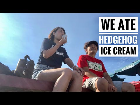 WE ATE HEDGEHOG ICE CREAM 🦔🍦| VANCOUVER DAYS 19 & 20