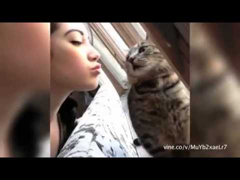 Hilarious! These Animals Don't Want to Be Kissed