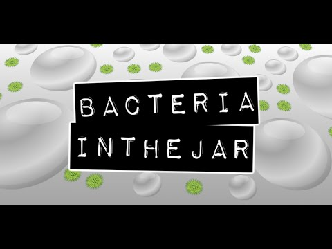 Video of Bacteria in the jar