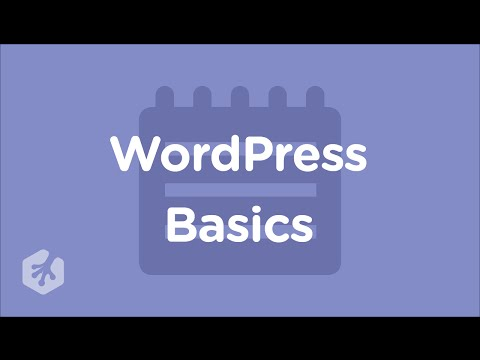 Learn Wordpress Basics with Treehouse