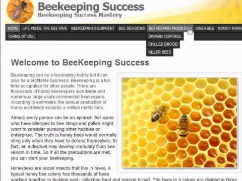 Beekeeping Beginners – Let's Go Look For Beekeeping Resources