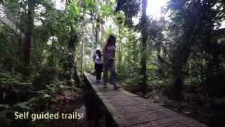La Selva Amazon Ecolodge & Spa - Ecuadorian Amazon