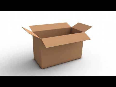 cardboard box (the bidding - tally hall meme)