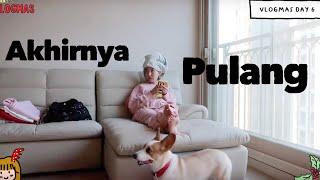Video VLOGMAS D6: LAST DAY DI JAKARTA - OFF TO SEOUL!   Ketemu OPPA2 ganteng! MP3, 3GP, MP4, WEBM, AVI, FLV Juli 2019