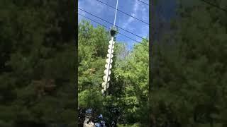 Przycinka lasu helikopterem wzdłuż linii energetycznej