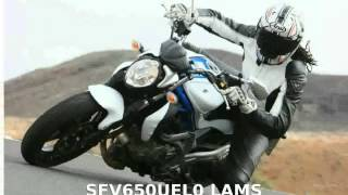 3. 2009 Suzuki Gladius 650  superbike Top Speed