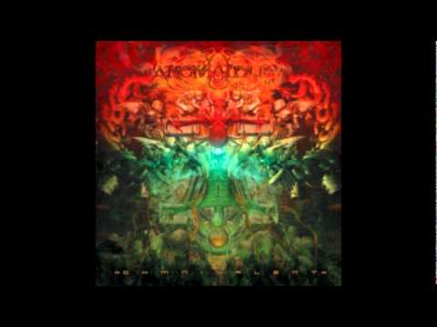 ANOMALOUS - The Seraphim Veil (OHMnivalent 2011) online metal music video by ANOMALOUS