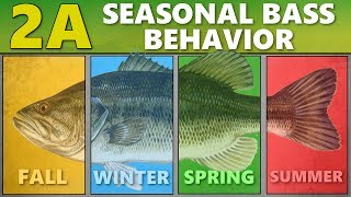 Video INTERMEDIATE GUIDE to BASS FISHING: 2A - Seasonal Bass Behavior MP3, 3GP, MP4, WEBM, AVI, FLV Mei 2019