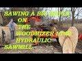 Sawing a big Maple on the Woodmizer LT40 hydraulic sawmill