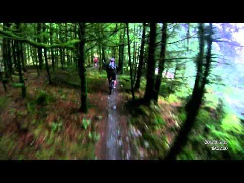 Breckfa Raven trail