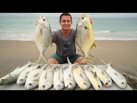 Florida's MOST Expensive Fish! Catch Clean Cook- Florida Pompano