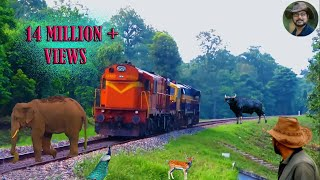 Video Chapramari Railway Track & Wild life . MP3, 3GP, MP4, WEBM, AVI, FLV Desember 2018