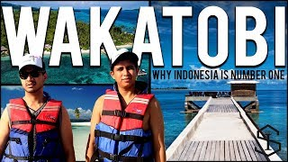 Download Youtube: Why Indonesia Is Number One