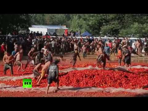VIDEO: Hundreds participate in Chile's 7th annual Tomato War