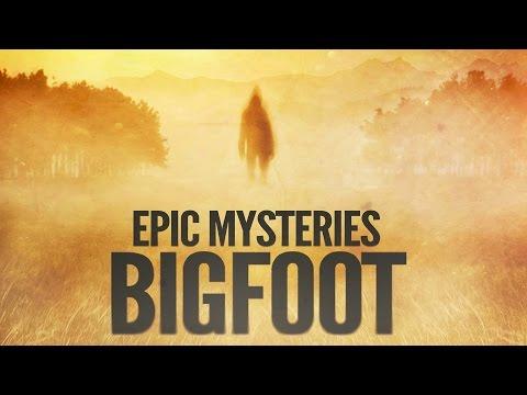 4K Bigfoot