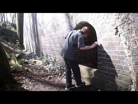 Эта история произошла в Англии. Молодой 19 летний парень по имени Айзек Уэллингтон Ваттс и его подруга Эмили...