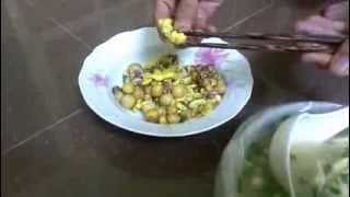Trứng Gà Cao Su, Tràng Trứng Tại Phố Chùa Hà - Hà Nội