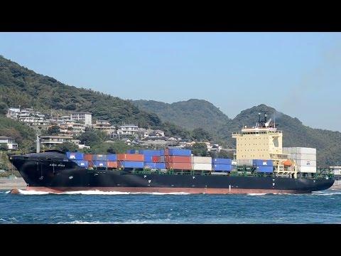ASIA IPSA - APL container ship