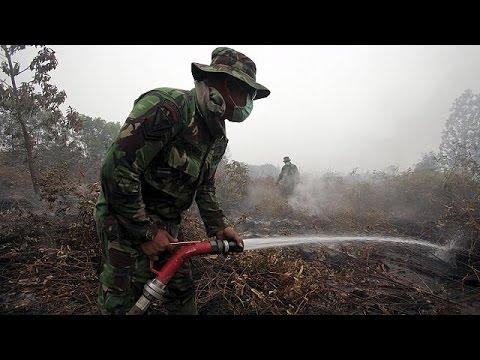 Ινδονησία: Στο έλεος των πυρκαγιών η Σουμάτρα